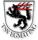 TSV Egmating II