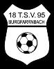 TSV Burgfarrnbach II