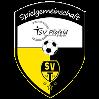 (SG) TSV Pfofeld